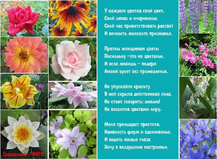 поздравление в стихах о цветах форме