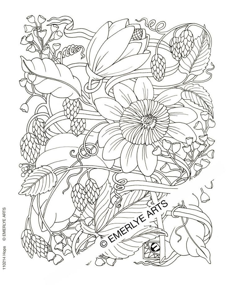 adult difficult coloring pages