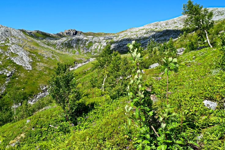 Great hiking landscape on the way to Sandhornet