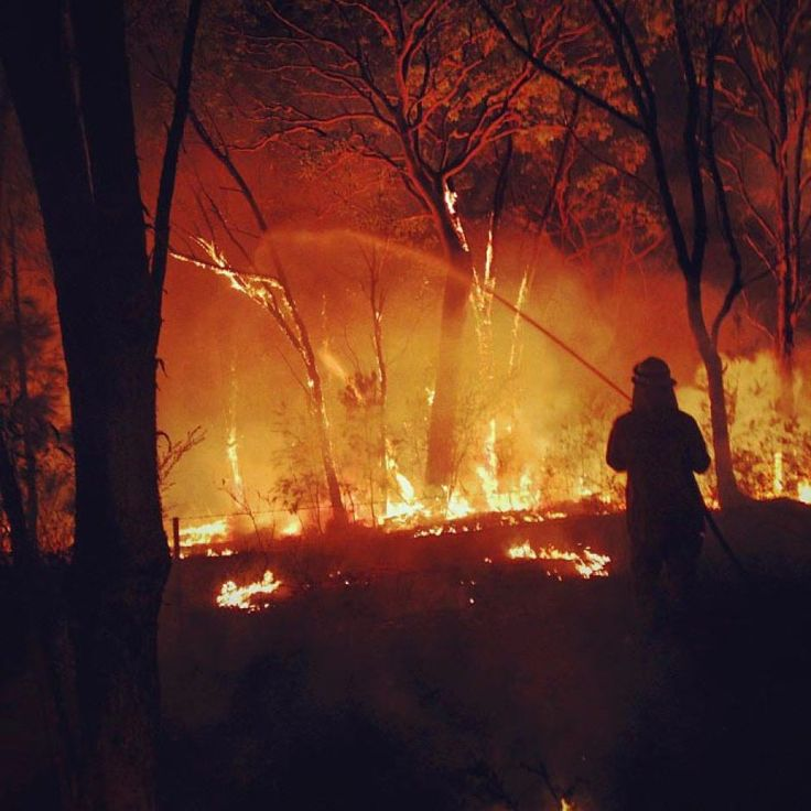 A firefighter battles a bushfire at Warrimoo in the Blue Mountains west of Sydney. Oct 2013