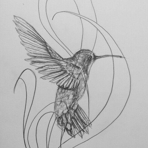 Hummingbird drawing.  Quick sketch .... art ideas