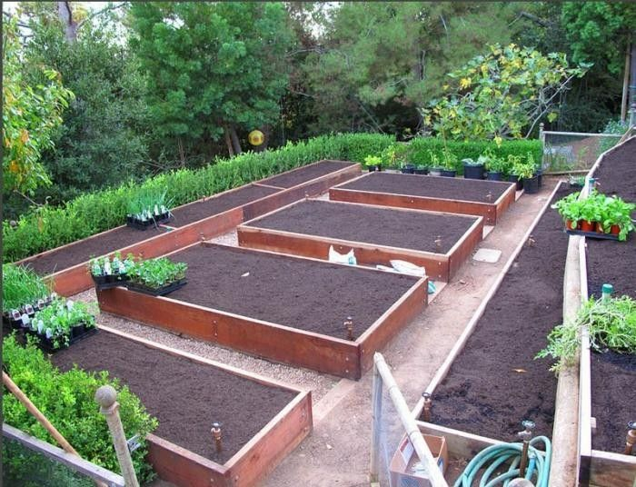 Best 10 vegetable garden layouts ideas on pinterest for Raised bed garden layout