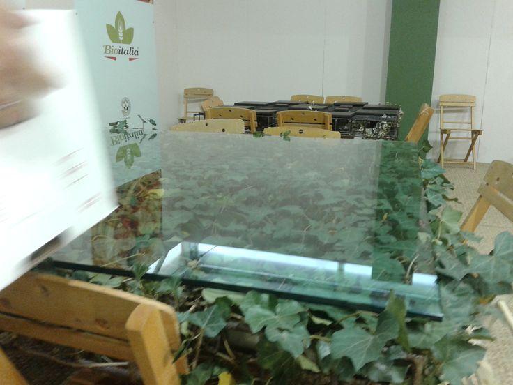 Tavolini in vetro e foglie.