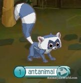 Animal Jam Lemurs animal-jam-lemur-codes-4  #AnimalJam #Animals #Lemur http://www.animaljamworld.com/animal-jam-lemur-codes/