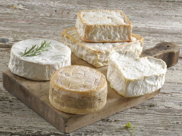 Cheese and fat are good, gut bacteria matters a lot, and other nutrition trends from 2013
