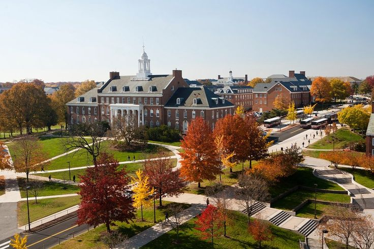 fall at the University of Maryland <3
