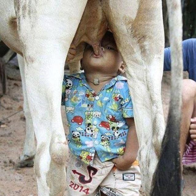 Milk please ;)