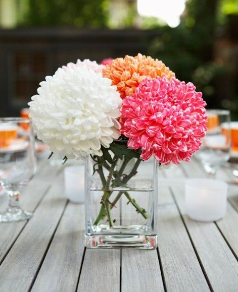 chrysanthemum: White, orange and pink, picked and placed in glass jar as table decoration