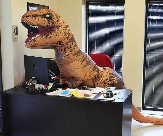 5cc3258d5b19a2d45ba4aac496683a28 t rex costume t rex humor best 25 inflatable t rex costume ideas on pinterest jurassic