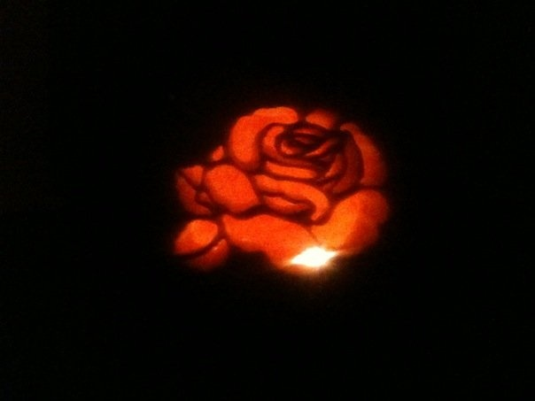 The rose lit up ;)