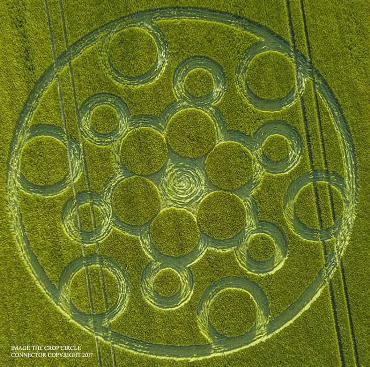 Crop Circle at Woolstone Hill, Nr Ashway, Oxfordshire. Reported 4th June  2017