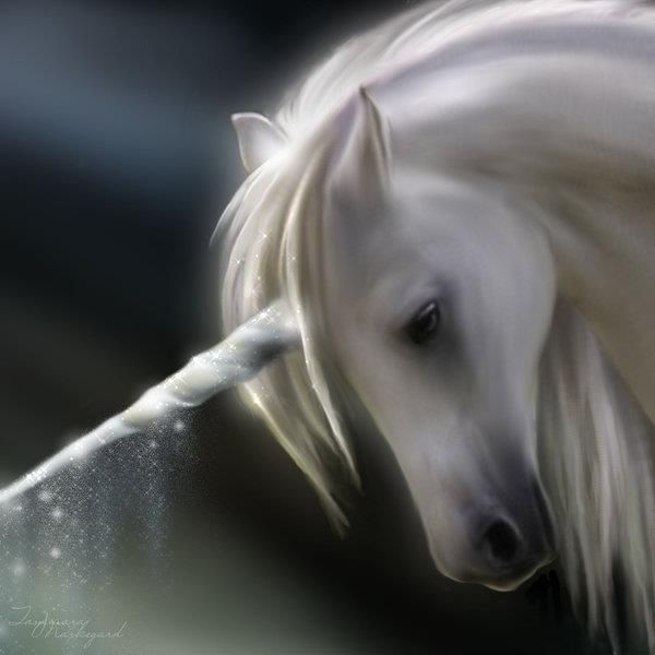 white unicorn ... According to a Harry Potter, Care of Magical Creatures class, unicorns are gold when they are born. (Thank you , J K Rowling)
