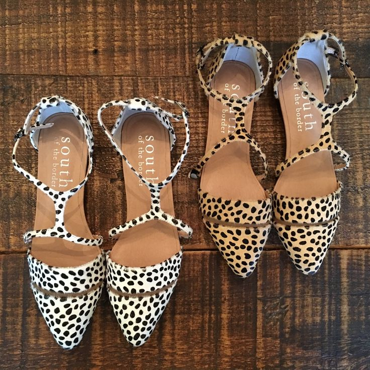 Image of FIFI FLATS : Snow Leopard and Camel Leopard