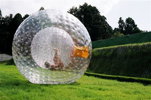 Inflatable grass zorb ball, when it roll in the hill, you