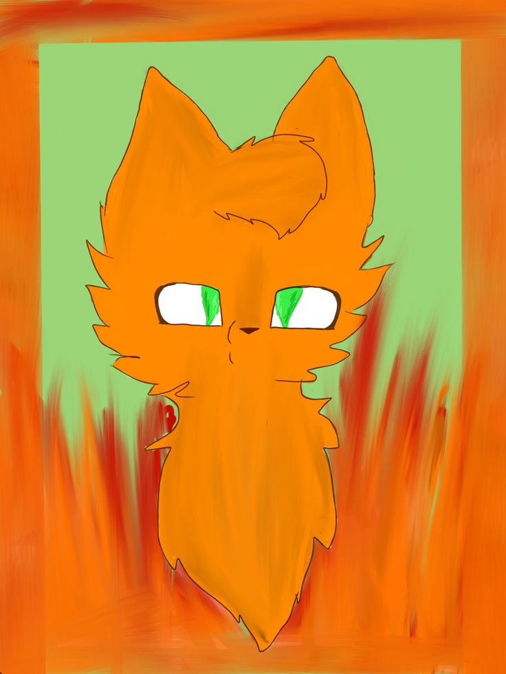 Fire star head shot!!! WOOOOOO!!!!! This took me for eveh!!, 3: but it turned out amazing :3