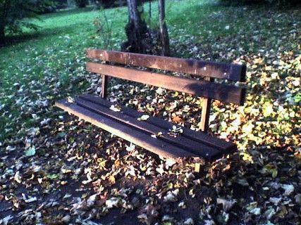 Podzim v parku 10/10