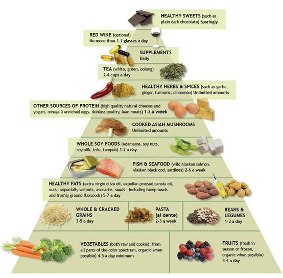 vegetarian food pyramid random