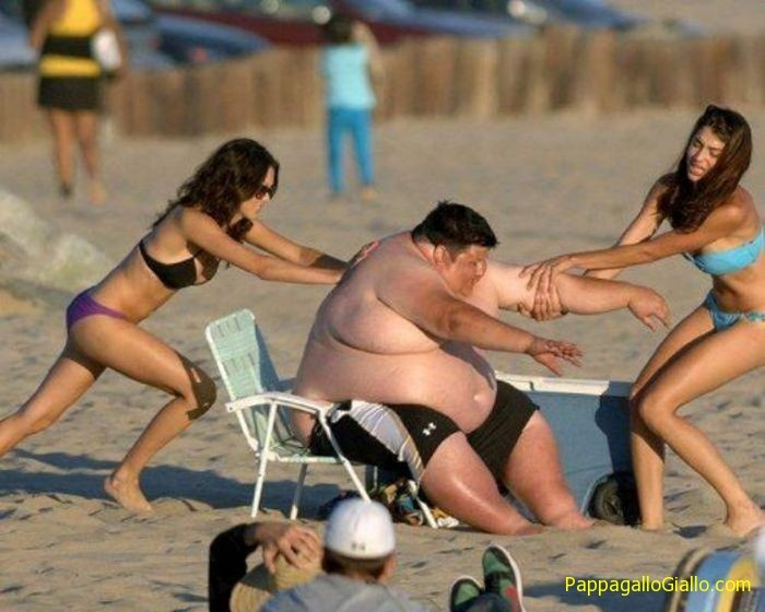 Immagini divertenti delle ragazze in bikini (59 foto)