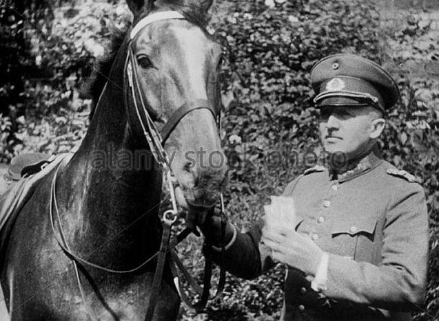 Kurt von Schleicher, 1931