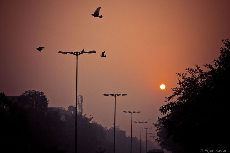 A morning in New Delhi,India