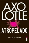 [ Resenha ] Axolotle Atropelado - Helene Hegemann