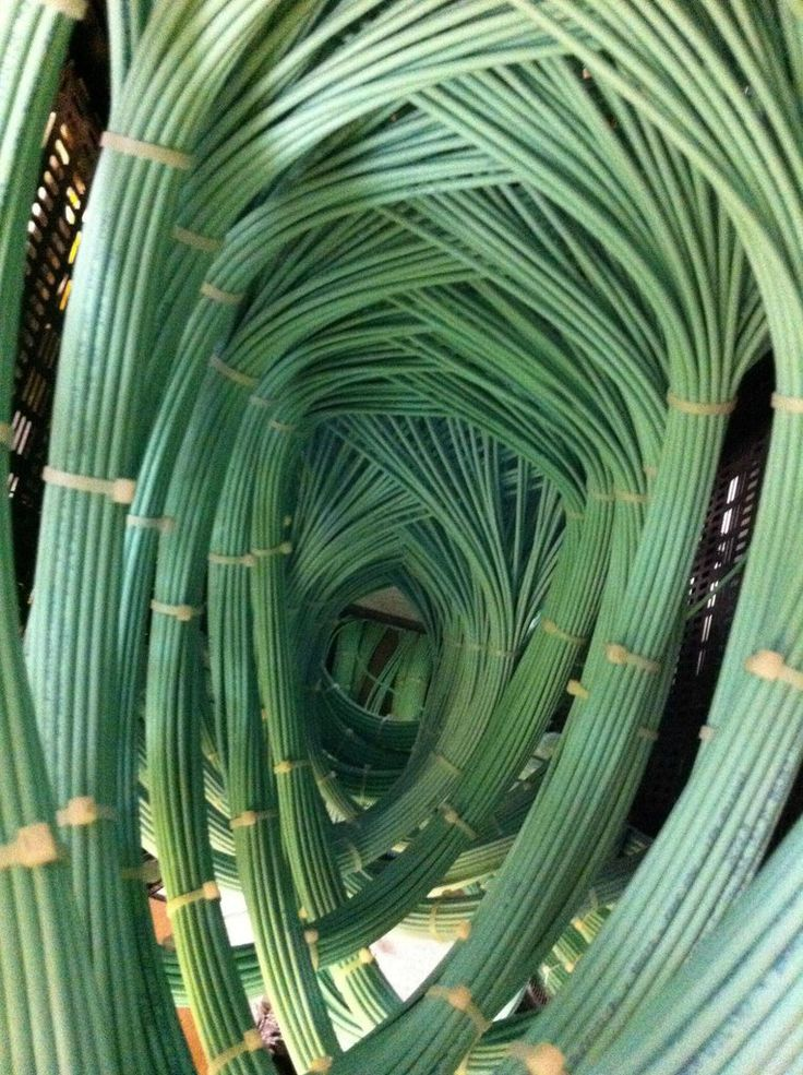 15 best Cable Ties and Friends images on Pinterest   Cable tie, Neck ...