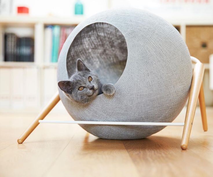 Feline Furniture Brand Meyou Has Launched Its First Collection With Three  Designer Cat Beds.