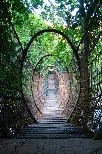 """Spider Bridge"", Sun City Resort, South Africa,"