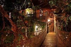 Pt3: Disneyland's Swiss Family Treehouse ...even as an adult I still wonder what it would be like to play house all night in the coolest Treehouse in the world (IMO). Of course in my fantasies, after closing, the staff is gone but the rides still operate (hey! It's MY fantasy!) ;)