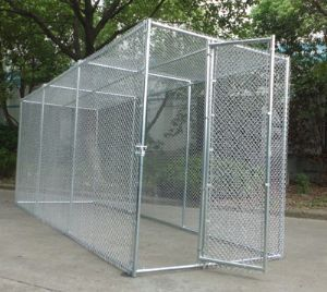 """KEEP RATS AND FOXES AWAY: Use 1"""" x 1"""" panels and either use paving slabs or concrete for the floor of your aviary (slabs are more versatile).  Cover the floor with sharp sand which can be raked to keep your aviary clear and fresh.  We can build custom aviary panels for you.  Call us on 01420 23986.  http://shop.robharvey.com/parrot-cages-aviaries--accessories-12-c.asp #aviariesdiy"""