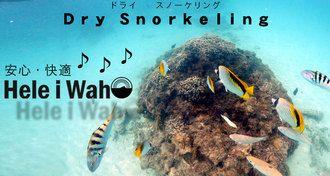 "AQROS Diving and Snorkeling | Rakuten Global Market: Snorkel set ""100% ドライスノーケル' with snorkelling set 3-point snorkeling set Hele i Waho"
