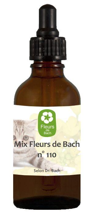 Les fleurs de Bach n° 110 : Le chat agressif