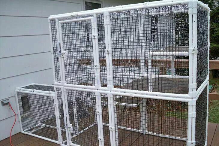 Outdoor Cat Enclosure Plans