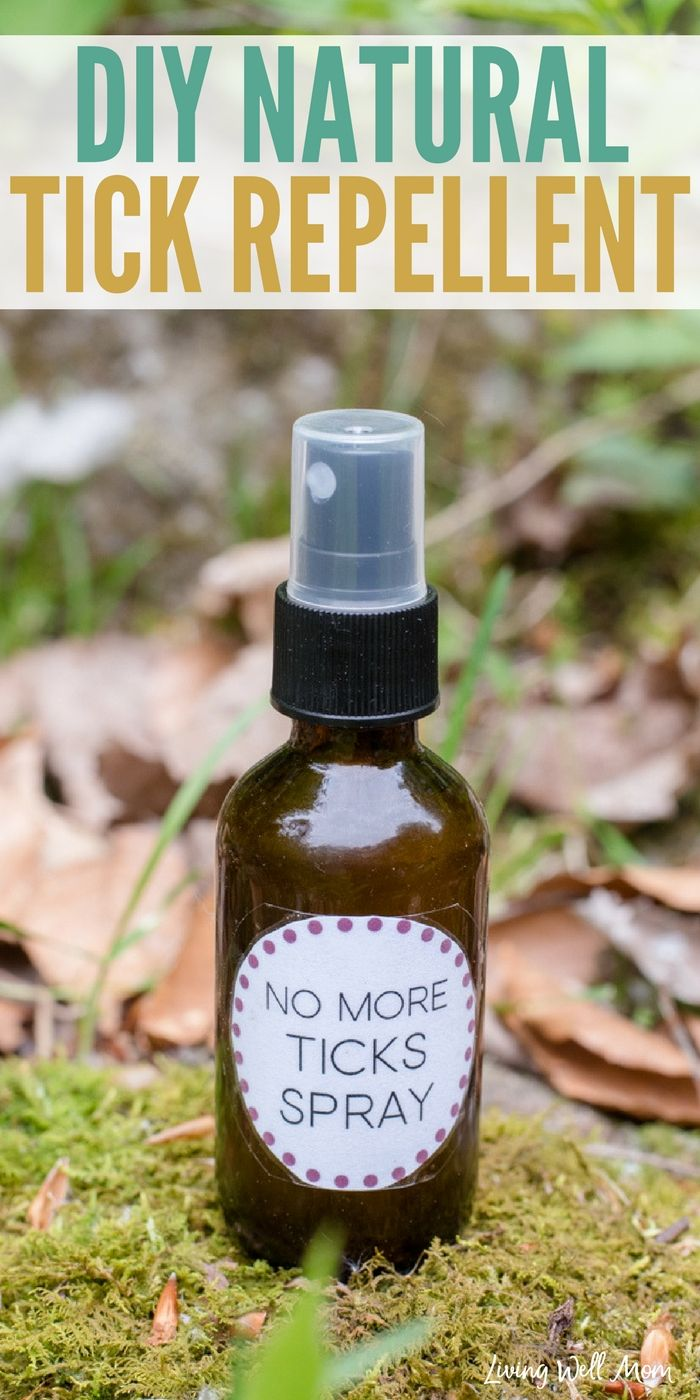 Keep ticks away without the harmful chemicals using this all natural essential oil tick repellent recipe. It takes 2 minutes to make and is safe and effective for the whole family!