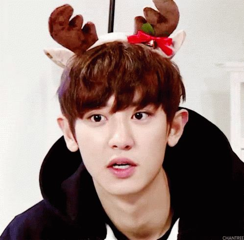 channie deer