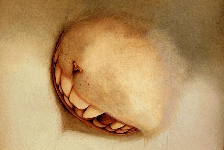 Cheshire cat by Rebecca Dautremer