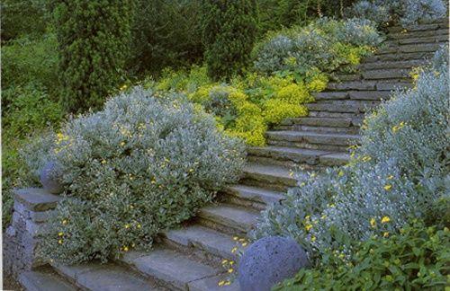 Gertrude jekyll garden design flowers butterf sm for Gertrude jekyll garden designs