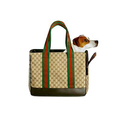 Gucci pet carrier