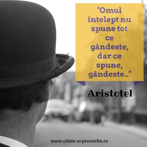 Gandim inainte sa vorbim. #intelepciune #aristotel