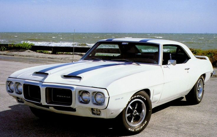 affordable muscle cars 1980's pontiac firebird