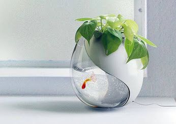 https://www.facebook.com/WishZeeApp/ Aquarium + Pot holder. Ratings please, 1-10  <3 @Wishzee Image from architecturendesign.net