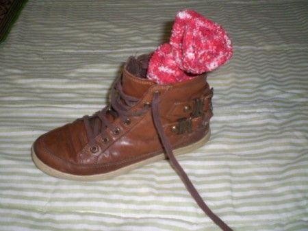 Using cat litter to deodorize shoes