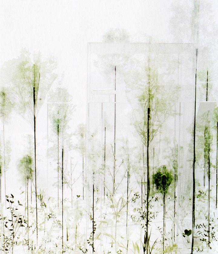 muchas estructuras en forma de bosque    Architecture born from the poetry - by Junya Ishigami render