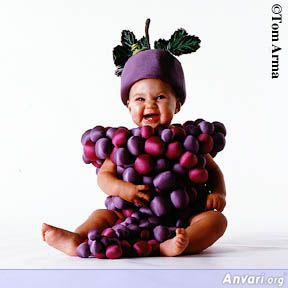 Grapes Baby