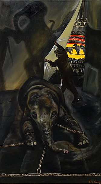 Every time you go to a circus--YOU ARE SUPPORTING THIS! DO NOT go to circuses that use animals--and let them know why!