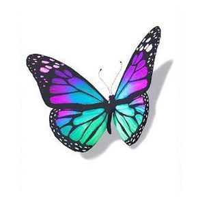 3D Colorful Butterfly Tattoo Design