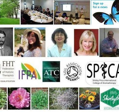 The 2012 Shirley Price Aromatherapy College Collage