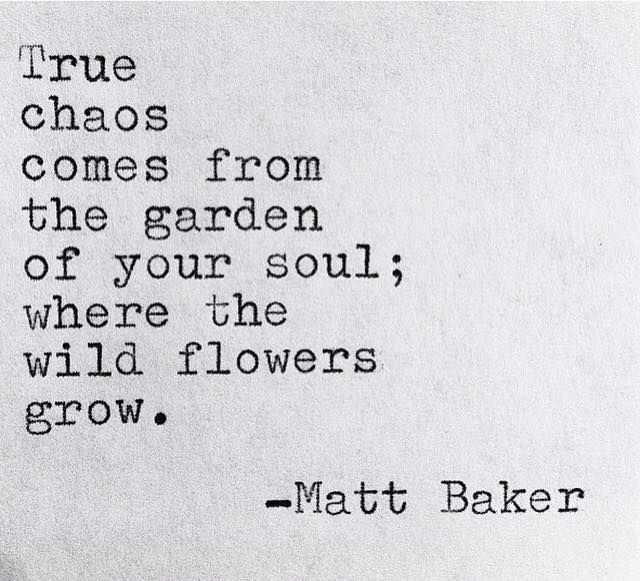 """""""True chaos comes from the garden of your soul; where the wild flowers grow"""" -Matt Baker"""