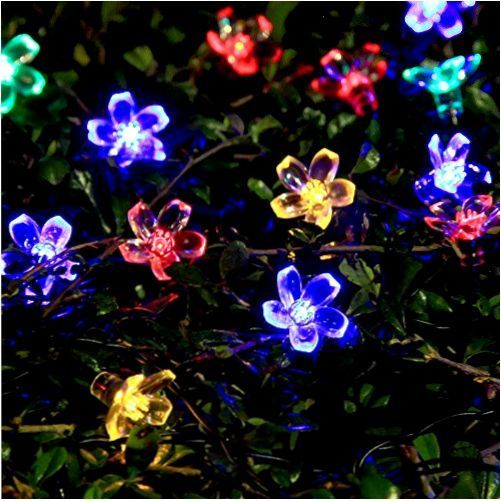 Daisy Solar String Lights: 1000+ Ideas About String Lights Outdoor On Pinterest