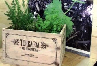Dagli imballaggi del vino piccoli orti e giardini per balconi
